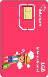 1GB International SIM